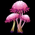 42586_mushroom6_fantasy_diana_512e32c11207d3c095adb85e8ffda8ac.png