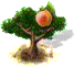 apricot_upgrade_0.png