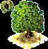 chestnut.png