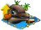 dolphin12.png