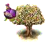 flavortree.png