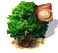 macadamia_upgrade_0.png