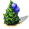 mountainjuniper.png