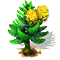 norfolkpine_upgrade_0.png