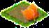 orangetulip.png