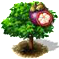 purplemangosteen_upgrade_0.png