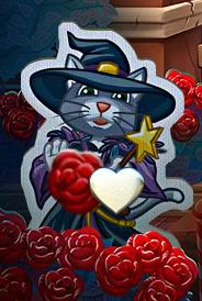 rózsás macska.png