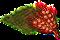 redwheat.png