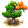 seabuckthorn_upgrade_0.png