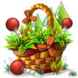 specialplantquestoct2018basket2_medium.png