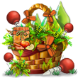 specialplantquestoct2018basket3_medium.png