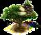stonepinetree_upgrade_0.png