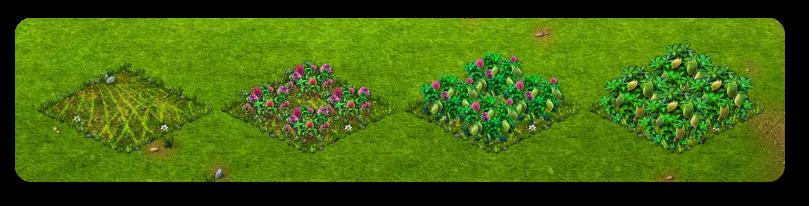 szülinapnövény.png