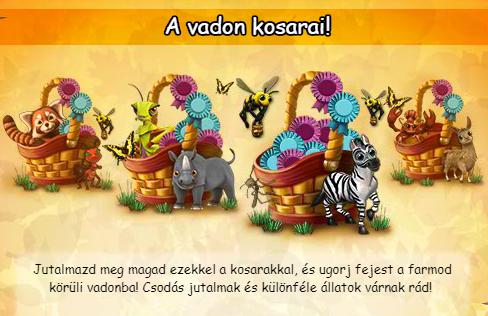 vadon_kosar_plakat.PNG