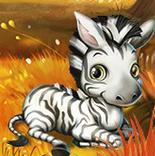 zebra t.png